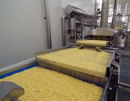 French fries degreasing shaking conveyor with Rosta oscillating mountings