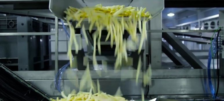 Degreasing oscillator French fries with Rosta
